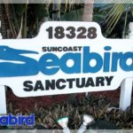 Suncoast Bird sanctuary
